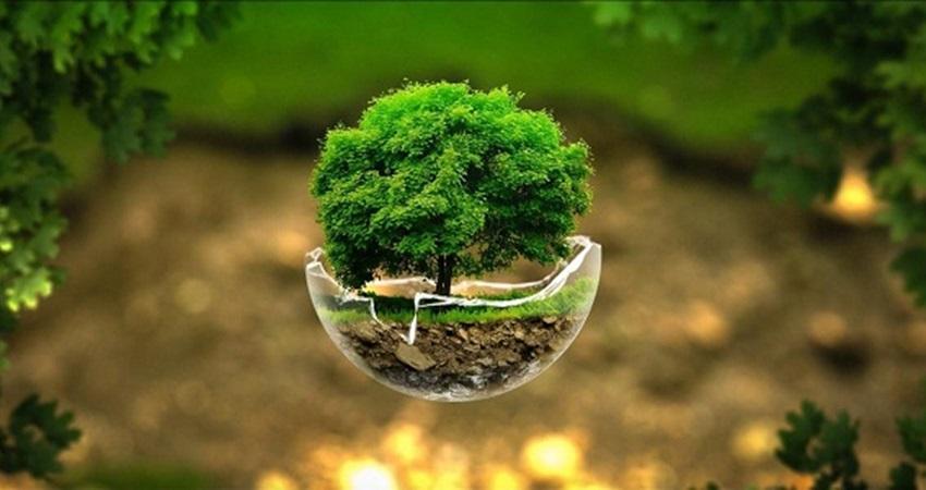 المشاكل البيئية التي يواجهها العالم العربي