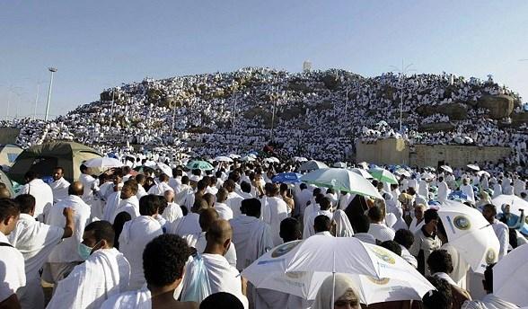 ضيوف الرحمن يتوافدون على صعيد عرفات